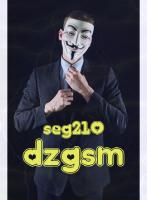 seg210 ��� ������ ������